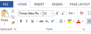 Times New Roman 12 point font